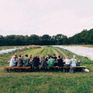 Solidarische Landwirtschaft WirGarten Open Social Franchise Netzwerk
